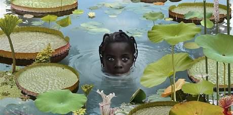 Ruud van Empel; snímky holandského fotografa vystavuje pražská Leica Gallery