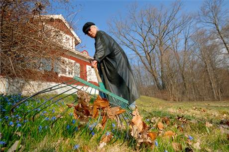 Do údržby trávníku se pusťte co nejdříve. Z povyrostlé trávy se vše mnohem hůře vyhrabává.