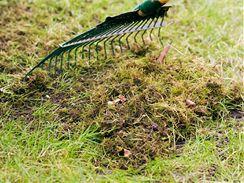 Prořezávací hrábě vám pomohou z trávníku dostat i mech.