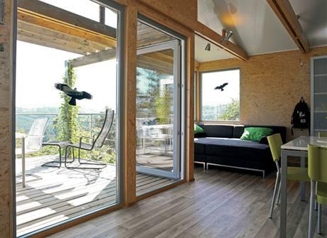 Siluety dravců nalepené na sklech chrání ptáky - ti předtím naráželi do oken