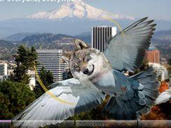Wolfpigeon Qualcomm