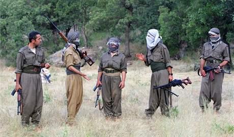 Bojovníci Strany kurdských pracujících na cvičení v severním Iráku nedaleko tureckých hranic v červnu 2008.