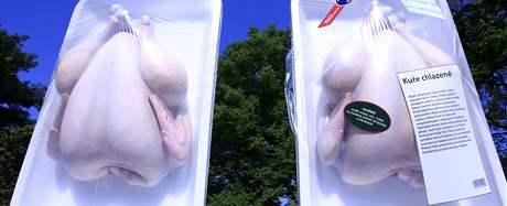Evropský parlament láká Brňany na Moravském náměstí k červnovým volbám