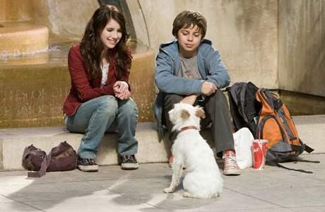 Z filmu Hotel pro psy
