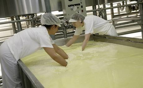 Sýrové zrno se musí rovnoměrně rozprostřít