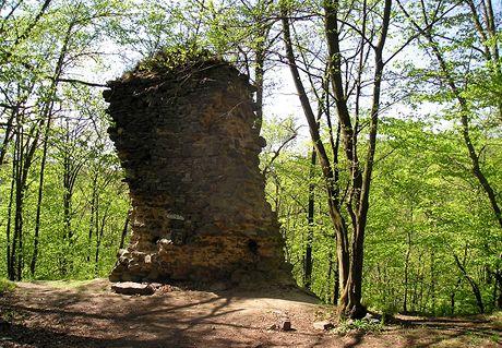 Zřícenina hradu Rabštejn u Dukovan