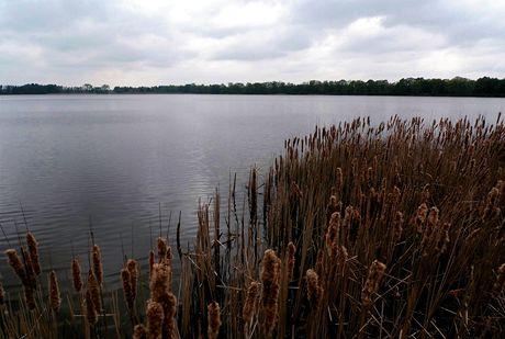 Rybník Potěšil