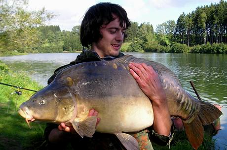 Kapr 18,5 kg