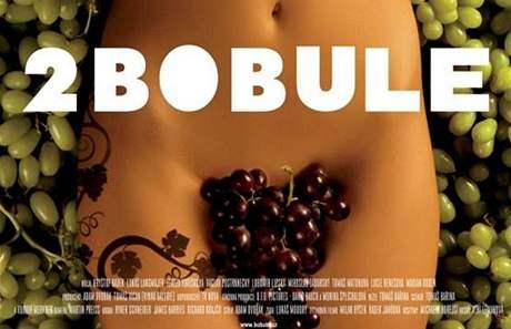 Návrh plakátu k filmu 2 Bobule - klín