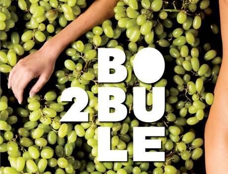 Návrh plakátu k filmu 2 Bobule - paže