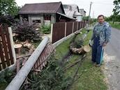 Větrná smršť napáchala značné škody.
