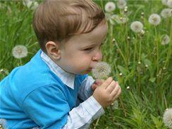 Klíšťata se zdaleka nevyskytují jenom v lese, můžete ho chytit i v městském parku či na zahradě u vlastního domu.