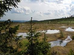 Na kole v Jizerkách. Rašeliniště Na Čihadle