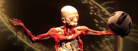 Otevření kontroverzní výstavy Bodies Revealed v Brně