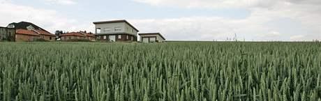 Pozemky, kvůli nimž byla možná starostka obce na Brněnsku napadena