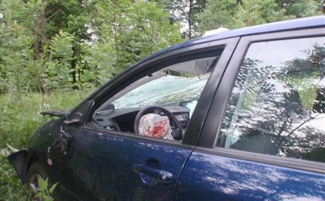 U Bystřice nad Hostýnem srazilo auto srnu