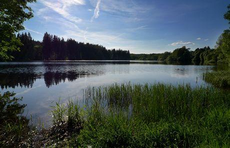 Český les - Olšový rybník v Brance
