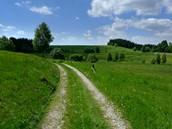Český les, okolí Lesné - cesta do Staré knížecí hutě