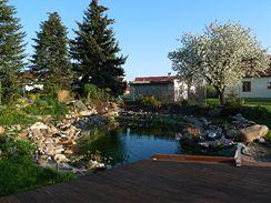 Napustíte vodu, upravíte břehy, jezírko i břehy osázíte vodními a bahenními rostlinami. A můžete se koupat.