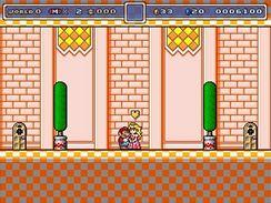 Super Mario Bros: Shine Expedition