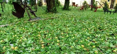 Derflice na Znojemsku zasypaly kroupy až do výše 25 centimetrů