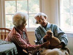 Dobrovolníci s terapeutickými kočkami docházejí do domovů důchodců, nejrůznějších stacionářů a ústavů formou tzv. návštěvní služby.
