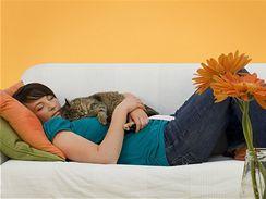 Osobní terapeutku vám ráda bude dělat i kočka z útulku.