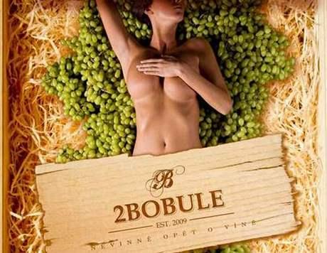 Návrh plakátu k filmu 2 Bobule - tělo