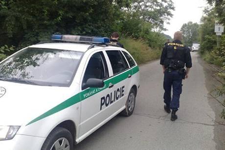 Policie v Praze u krčského lesa, kde pravděpodobně lupiči spálili auto.