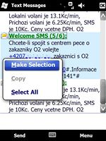 Windows Mobile 6.5 (email)