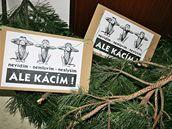 Protestní akce proti kácení stromů na Horníkové: Nesehnutí přišlo na brněnský odbor životního prostředí s větvemi a transparenty