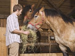 Za svým koněm samozřejmě můžete přijet kdykoliv, jak vám to čas dovolí.