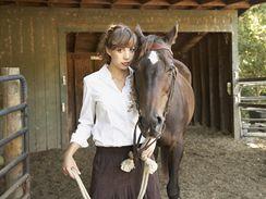 Za svým koněm moci kdykoliv přijít a kdykoliv ho zase opustit s vědomím, že má vše co potřebuje, to je pro mnohé majitele koní ideál.