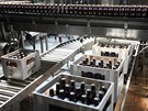 Výroba piva Birell