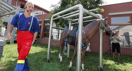 První koňská