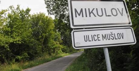 Pozemek nedaleko mikulovské čtvrti Mušlov - kde bude avizovaná Teknoparty
