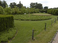Hned tři bludiště vedle sebe najdete v zahradách v Ostré u Lysé nad Labem (Botanicus)