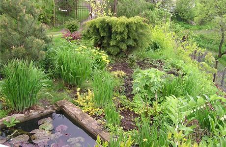 Rostliny jsou zasázeny bez rozmyslu, bez ladu a skladu