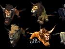 World of Warcraft: nový vzhled forem pro druidy