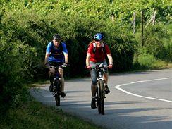 Cyklisté na Pálavě. Ilustrační foto
