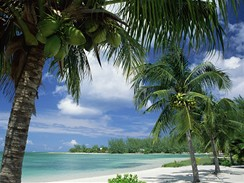 Kajmanské ostrovy, pláž poblíž Rum point na Grand Cayman