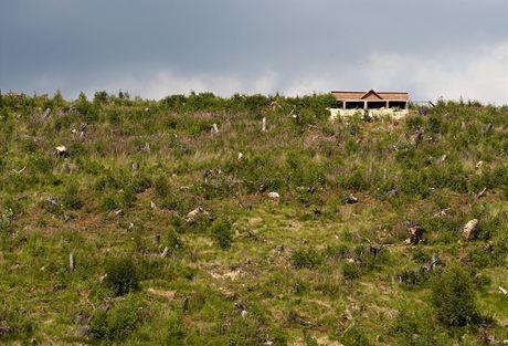 Slovensko. Pohled na zpustošené lesy ze Starého Smokovce