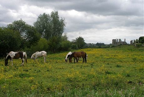 Irsko, hrad Trim