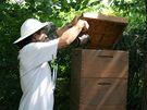 Tzv. kuřák pomáhá včelaři zklidňovat včely, například aby mohl prohlédnout rámky