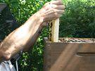 Po odklopení víka úlu se objeví jednotlivé rámky, do kterých včely nosí pyl