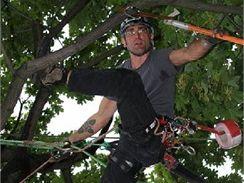 9. ročník mistrovství ČR ve stromolezení se odehrává v neděli 23. srpna v Lomnici nad Popelkou, na vrchu Tábor (ilustrační foto z loňského ročníku)