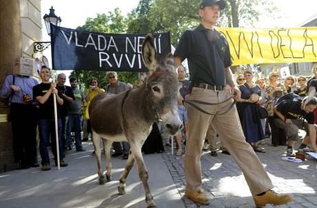 Vědci a jejich příznivci si na demonstraci při příležitosti diskuse o budoucnosti české vědy přivedli i živého osla. (31. srpna 2009)