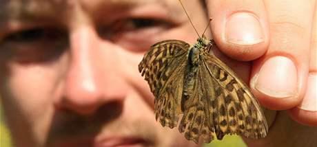 David Novotný zkoumal a počítal motýly v okolí Ždánic