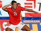 Česko: útočník Milan Baroš se raduje ze vstřeleného gólu