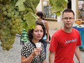 Dnes začalo v Mikulově Pálavské vinobraní
